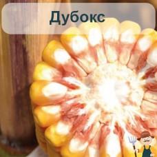 Насіння кукурудзи Дубокс