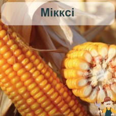 Насіння кукурудзи Мікксі