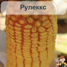 Насіння кукурудзи Рулеккс